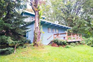 17802 244th St NE, Woodinville, WA 98077 (#1006343) :: Ben Kinney Real Estate Team