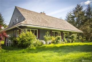 947 S Shore Rd, Quinault, WA 98575 (#1006973) :: Ben Kinney Real Estate Team