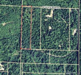 0 NE Black Bear Rd, Belfair, WA 98528 (#1007345) :: Ben Kinney Real Estate Team