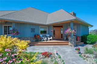 3741 S Ferguson, Ellensburg, WA 98926 (#1008672) :: Ben Kinney Real Estate Team