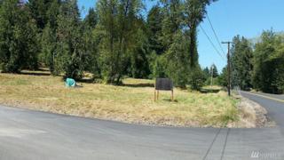 110 Axis Rd, Castle Rock, WA 98611 (#1009153) :: Ben Kinney Real Estate Team