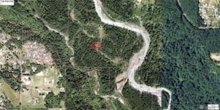 0 6th St Ct E, Lake Tapps, WA 98390 (#1009970) :: Ben Kinney Real Estate Team