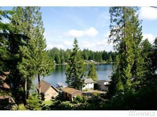 235-xx S Lake Roesiger Rd, Snohomish, WA 98290 (#1010188) :: Ben Kinney Real Estate Team