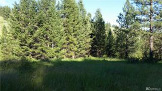 0-tbd Homeland Place, Oroville, WA 98844 (#1010947) :: Ben Kinney Real Estate Team
