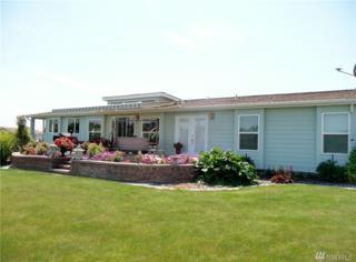 11214 Montezuma Dr NE, Moses Lake, WA 98837 (#1012181) :: Ben Kinney Real Estate Team