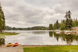14114 46th Ave NW, Stanwood, WA 98292 (#1012854) :: Nick McLean Real Estate Group