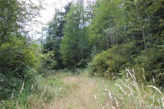 527 W Cross Island Rd, Camano Island, WA 98282 (#1013859) :: Ben Kinney Real Estate Team
