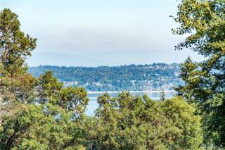 0-49XX SW Point Robinson Rd, Vashon, WA 98070 (#1013959) :: Ben Kinney Real Estate Team