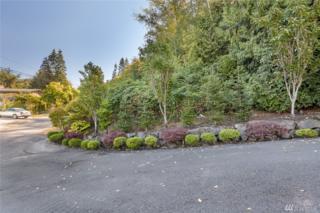 7200-xxx Picnic Place, Edmonds, WA 98026 (#1015788) :: Ben Kinney Real Estate Team