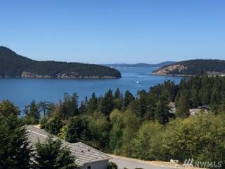 4407 Marine Heights Wy, Anacortes, WA 98221 (#1016315) :: Ben Kinney Real Estate Team