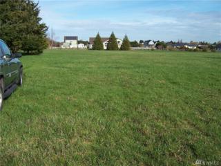 999 Three Firs Lane, Sequim, WA 98382 (#1016326) :: Ben Kinney Real Estate Team