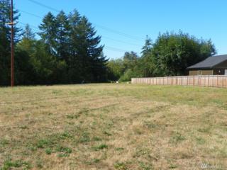 145 Meadow Lp, Montesano, WA 98563 (#1018626) :: Ben Kinney Real Estate Team