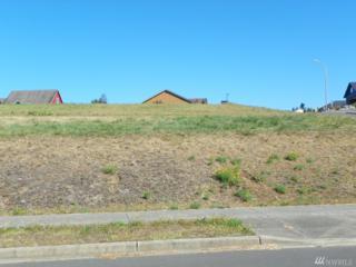 515 Meadow Lp, Montesano, WA 98563 (#1018627) :: Ben Kinney Real Estate Team