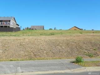 525 Meadow Lp, Montesano, WA 98563 (#1018636) :: Ben Kinney Real Estate Team