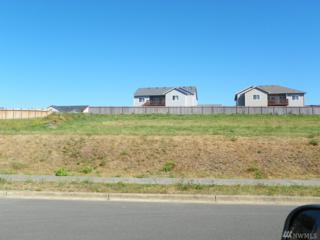 100 Meadow Lp, Montesano, WA 98563 (#1018642) :: Ben Kinney Real Estate Team