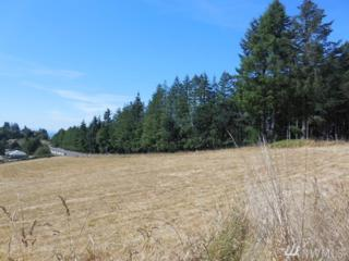 2627-next to Mt Pleasant Rd, Kelso, WA 98626 (#1021782) :: Ben Kinney Real Estate Team