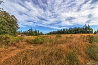 0 Hwy 20, Port Townsend, WA 98368 (#1021813) :: Ben Kinney Real Estate Team