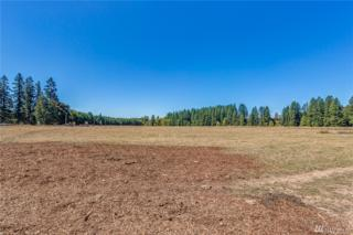 965 Spencer Rd, Toledo, WA 98591 (#1022451) :: Nick McLean Real Estate Group