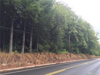 0 Westside Hwy, Castle Rock, WA 98611 (#1025274) :: Ben Kinney Real Estate Team