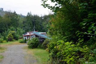297345 Highway 101, Quilcene, WA 98376 (#1025601) :: Ben Kinney Real Estate Team