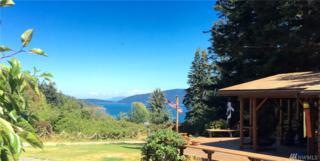 12 Spotted Deer Lane, Orcas Island, WA 98279 (#1026050) :: Ben Kinney Real Estate Team