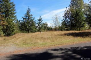 8026 Dawn Hill Dr SE, Olympia, WA 98513 (#1026767) :: Ben Kinney Real Estate Team