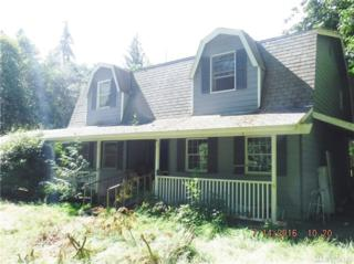 401 Shadow Lane, Port Angeles, WA 98363 (#1026861) :: Ben Kinney Real Estate Team