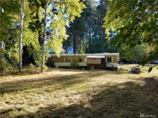324 Washington St, Cle Elum, WA 98922 (#1027573) :: Ben Kinney Real Estate Team