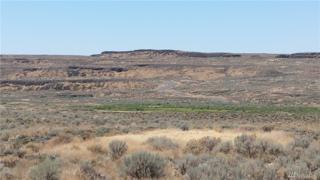53 Eagle Springs Ranch, Marlin, WA 98832 (#1028869) :: Ben Kinney Real Estate Team