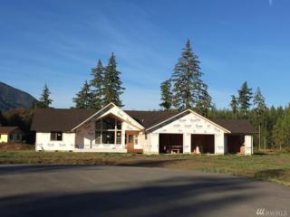 8124 Coyote Springs Lane, Sedro Woolley, WA 98284 (#1029398) :: Ben Kinney Real Estate Team