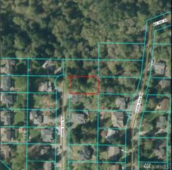 400-XX 209th Ave NE, Sammamish, WA 98074 (#1029659) :: The DiBello Real Estate Group