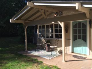 1560 NE Haven Wy, Tahuya, WA 98588 (#1029998) :: Ben Kinney Real Estate Team