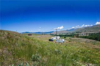 1 Signal Hill Rd, Winthrop, WA 98862 (#1030501) :: Ben Kinney Real Estate Team
