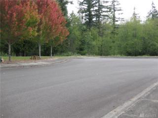 1618 Maple Valley Dr, Centralia, WA 98531 (#1030784) :: Ben Kinney Real Estate Team