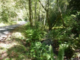 0 Wooding Rd, Washougal, WA 98671 (#1032433) :: Ben Kinney Real Estate Team