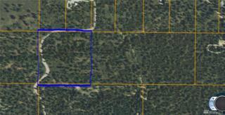 27 Chief Joseph Trail, Riverside, WA 98849 (#1035314) :: Ben Kinney Real Estate Team