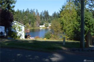 2224 194th Ave KP, Lakebay, WA 98349 (#1035574) :: Ben Kinney Real Estate Team