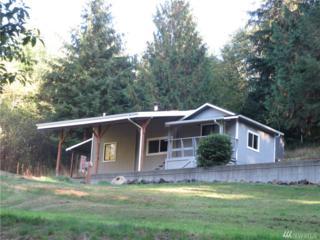 60 W Puyallup Dr, Elma, WA 98541 (#1035756) :: Ben Kinney Real Estate Team