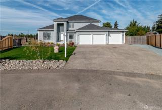7803 225th St Ct E, Graham, WA 98338 (#1035828) :: Ben Kinney Real Estate Team