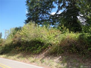 6200 Long Lake Rd, Port Orchard, WA 98366 (#1035846) :: Ben Kinney Real Estate Team