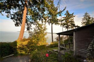 159 S Harrington Lagoon Rd, Coupeville, WA 98239 (#1036556) :: Ben Kinney Real Estate Team
