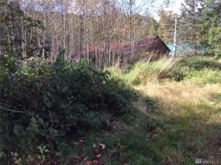 71675 NE Old Cascade Hwy, Skykomish, WA 98288 (#1037463) :: Ben Kinney Real Estate Team
