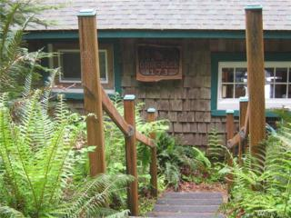 173 South Shore Rd, Quinault, WA 98575 (#1037828) :: Ben Kinney Real Estate Team