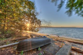 75 Waldron View Lane, Orcas Island, WA 98245 (#1038183) :: Ben Kinney Real Estate Team