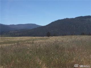 10-B Mountain Creek Dr, Cle Elum, WA 98922 (#1038467) :: Ben Kinney Real Estate Team