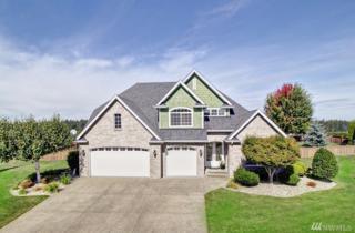 9206 Milburn Lp SE, Olympia, WA 98513 (#1039411) :: Ben Kinney Real Estate Team