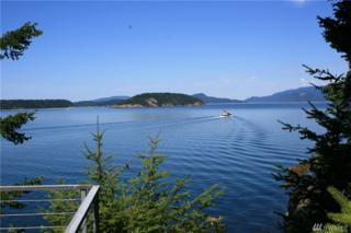 331 E Cove Rd, Decatur Island, WA 98221 (#1039555) :: Ben Kinney Real Estate Team
