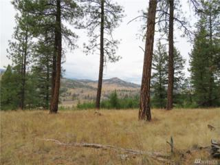 0-Gvt lot Boulder/Deer Cr. Rd, Curlew, WA 99118 (#1039869) :: Ben Kinney Real Estate Team