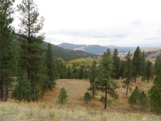 0-Gvt lot Boulder/Deer Cr. Rd, Curlew, WA 99118 (#1039929) :: Ben Kinney Real Estate Team