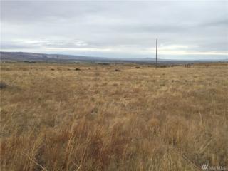 2464 Ellensburg Ranches Rd, Ellensburg, WA 98926 (#1039933) :: Ben Kinney Real Estate Team